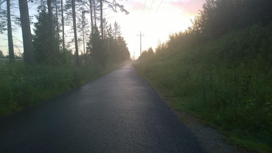 Foggy Bike Path